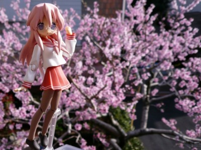 figma らき☆すた 高良みゆき 野外撮影 with 桃の花